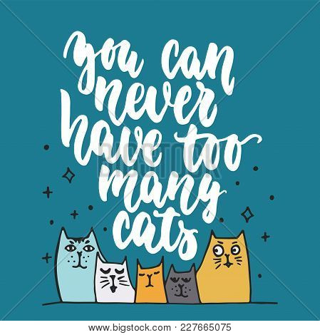 You Can Never Have Too Many Cats - Hand Drawn Lettering Phrase For Animal Lovers On The Dark Blue Ba