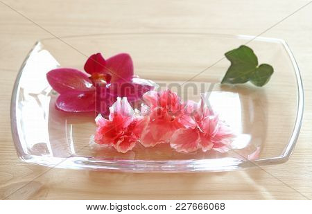 Floral Background, Pink Gardenia And Orchid Blossoms In A Glass Bowl