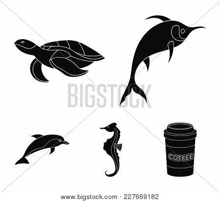 Merlin, Turtle And Other Species.sea Animals Set Collection Icons In Black Style Vector Symbol Stock