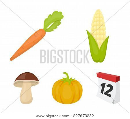 Corn Corn, Vitamin Carrots With Tops, Pumpkin, Forest Mushroom. Vegetables Set Collection Icons In C