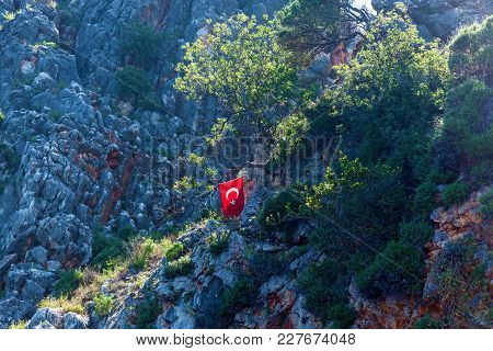 Turkish Flag On Ftree. Mediterranean Sea. Turkish Flag On Tree In Mountains In Alanya, Turkey. Turki