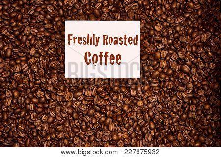Overhead Image Of Freshly Roasted Coffee Beans With A Freshly Roasted Coffee Sign On Top Of The Bean