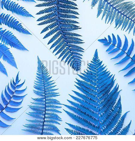 Fern Tropical Leaf. Neon Floral Leaves Fashion Concept. Vivid Surreal Blue Design. Art Gallery. Crea