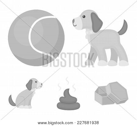 Dog Sitting, Dog Standing, Tennis Ball, Feces. Dog Set Collection Icons In Monochrome Style Vector S