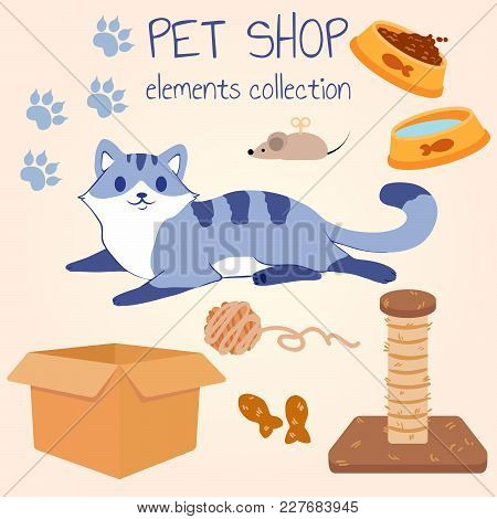 Happy Gray Cat Lies And Smiles. Pet Shop Poster Design With Many Accessories. Vector Illustration.