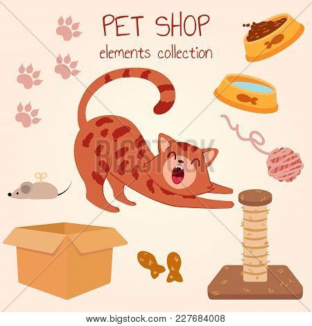 Happy Red-haired Bengali Cat Yawns. Pet Shop Poster Design With Many Accessories. Vector Illustratio
