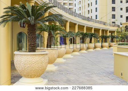 Modern Architecture And Construction, Landscape Design, Interior View Of The Courtyard With Palm Tre