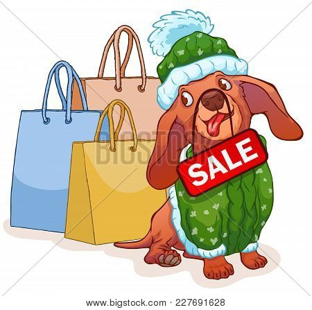Funny Dachshund In Green Sweater Sits Next To A Gift Bag. Cartoon Characters. Vector Illustration. B