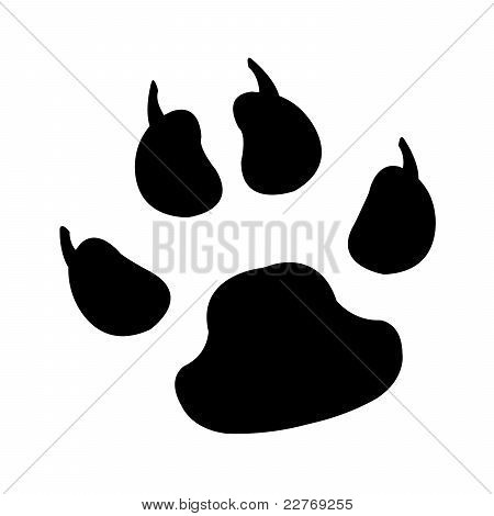 Animal Foot Print illustration