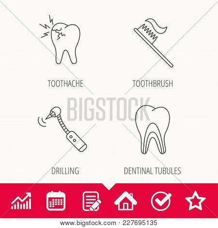 Toothache, Drilling Tool And Toothbrush Icons. Dentinal Tubules Linear Sign. Edit Document, Calendar