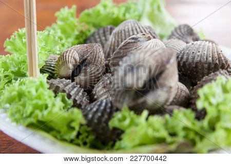 Fresh And Delicious Cockles For Seafood Background