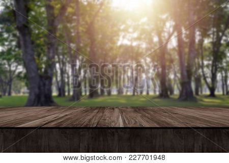 Wooden Table And Blurry Nature Of Forest In Background.