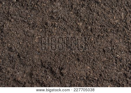 Potting Soil Flat Surface Background Texture Pattern