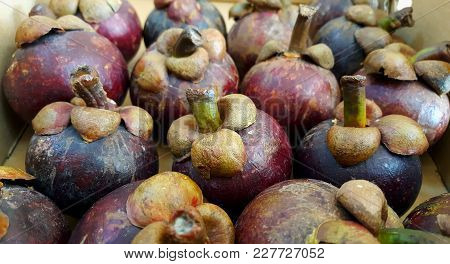 Mangosteen. Asian Fruit Background. Queen Of Fruits