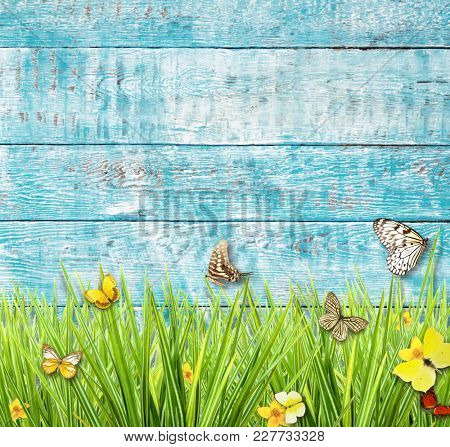 Idyllic spring meadow with butterflies with old wooden planks on background. Spring concept with copyspace.