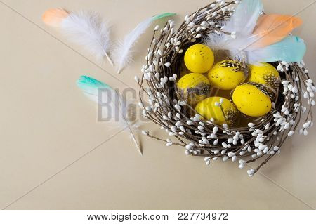 Easter Eggs In The Nest On A Light Background. Scattered Color Feathers. Traditionally Holiday Decor