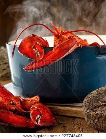 Lobster Steaming In A Pot On A Rustic Background.