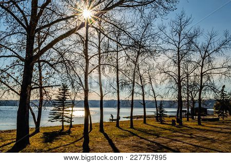 Autumn Landscape In A Park With Bare Trees And Falling Yellow Leaves By The River, Sun  With Sunbeam