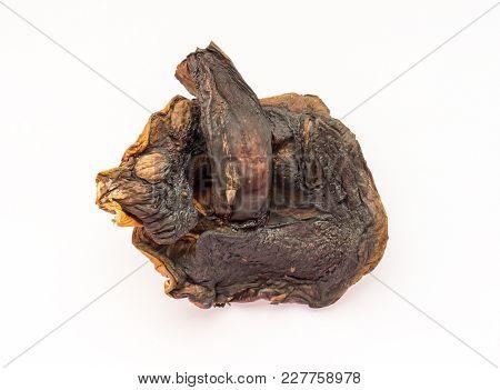 Dried mushroom porcini isolated.