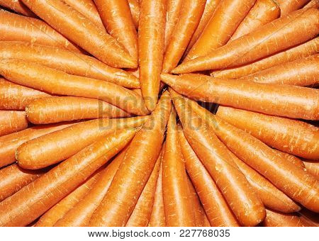 Fresh Organic Carrots. Background Texture Of Carrots
