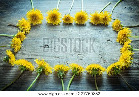 Arrangement Of Yellow Dandelions In Frame Shape On Dark Gray Wooden Background, Space For Text