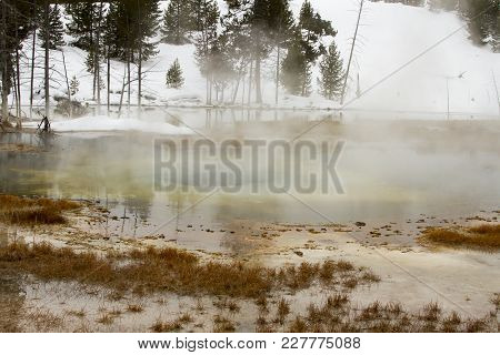 Landscape Of Steaming Water In Upper Geyser Basin, Yellowstone National Park