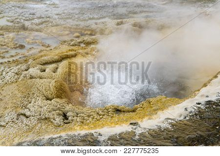 Close Up Of Erupting Geyser In Upper Geyser Basin, Yellowstone National Park