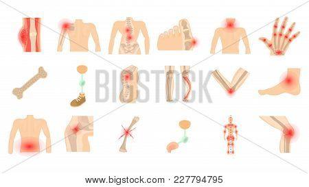 Human Bones Icon Set. Cartoon Set Of Human Bones Vector Icons For Web Design Isolated On White Backg