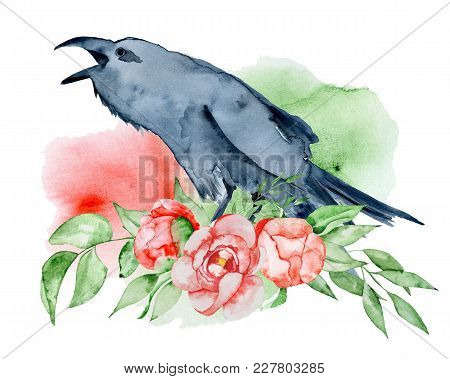 Watercolor Black Raven With Floral Peony Bouquet Hand Drawn Crow With Flowers Illustration
