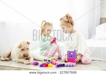 Educational Toys For Preschool And Kindergarten Child. Two Children Play Toys. The Dog Is Sitting. T