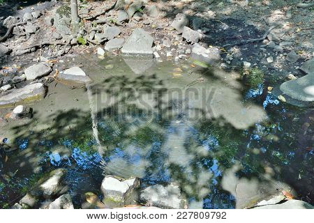 A Close Up Of The Mineral Spring With Radon Water In Taiga.