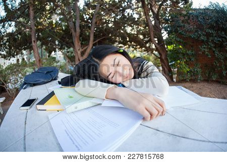 Tired Female Student Sleeping On Notebooks In The Park