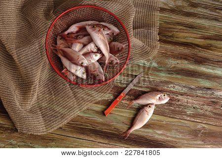 Fresh, Caught, Raw Fish Lithrini (pagellus Erythrinus) On A Wooden Table Close-up.