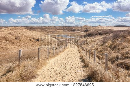 Typical Dutch Dune Landscape That Is Part Of The Zuid Kennemerland National Park