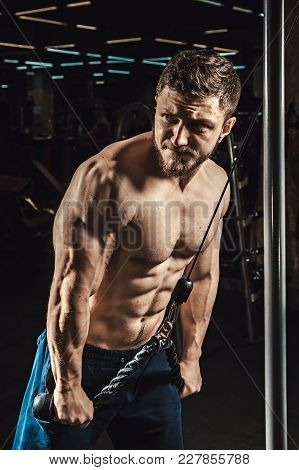 Handsome Athletic Man Execute Exercise For Triceps In Dark The Gym Looking In The Mirror