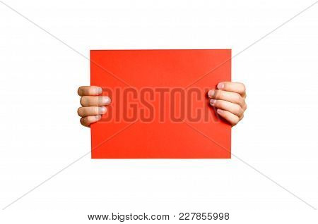 Hands Holding A Red Clean Blank Sheet Of A4. Isolated On White Background.