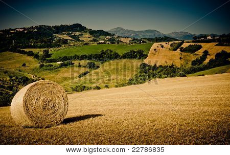 lovely green lush countryside in the morning light with hay bale in the foreground
