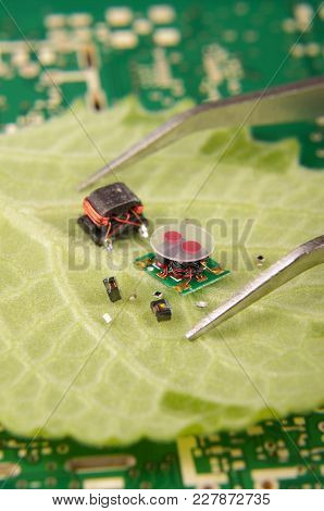 Organic And Electronics Concept Reflected By Electronic Components Placed On Flower Leaf