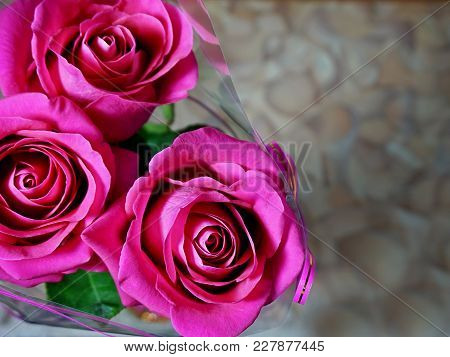 Flowers. A Bouquet Of Three Roses. Dark Pink Color.