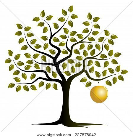 Vector Apple Tree With One Big Golden Apple Isolated On White Background