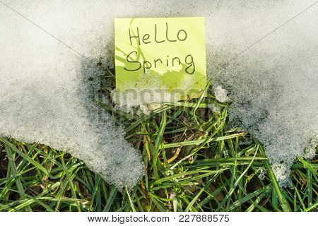 Hello Spring. Sticker With Handwritten Text Against A Background Of Melting Snow And Green Grass