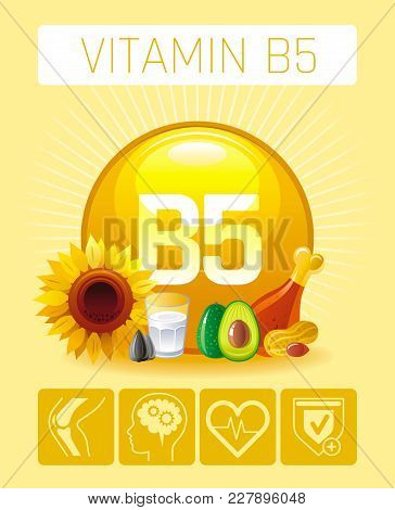 Pantothenic Acid Vitamin B5 Rich Food Icons. Healthy Eating Flat Icon Set, Text Letter Logo, Isolate