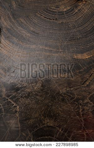 Wooden Background And Texture With Different Breeds.