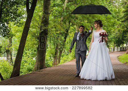 Bride And Groom Walking In Summer Park Outdoors