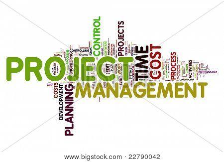 Conceito de gestão de projetos na nuvem de Tags de palavra