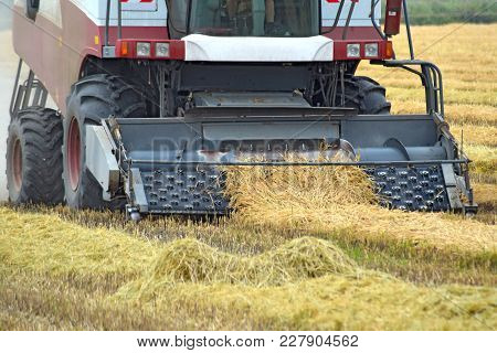 Collection Sloping Rice Threshing. Agricultural Machinery Harvest On The Field. Kombain Collector.