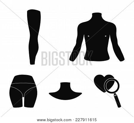 Torso, Leg, Neck And Buttocks. Body Parts Set Collection Icons In Black Style Vector Symbol Stock Il