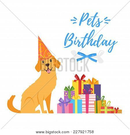 Vector  Cartoon Style Illustration Of Pets Birthday Greeting Card With Pile Of Presents And Happy Do