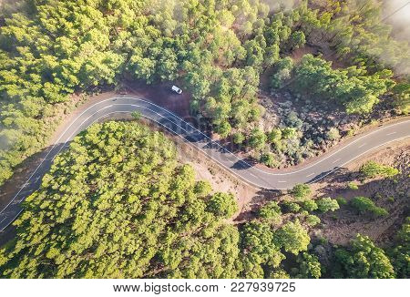 Aerial View Of Road Inside Forest With Trees On Teide Natural Park In Tenerife - Wander Travel And N