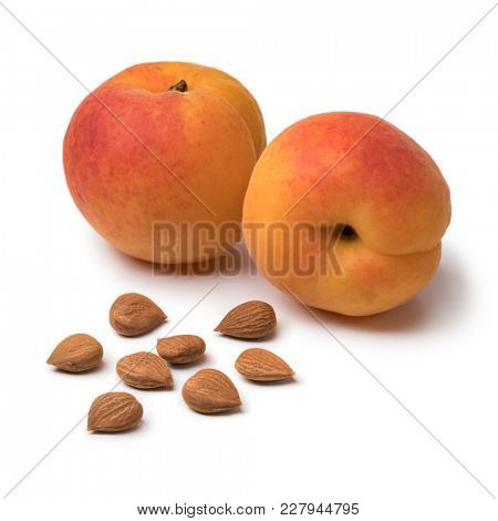 Dried apricot stones with fresh ripe apricots in the background isolated